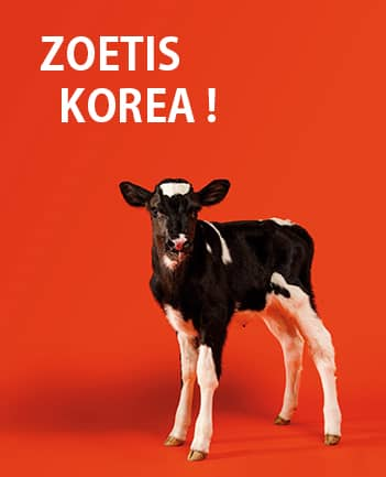 Zoetis Korea, Inc. Local